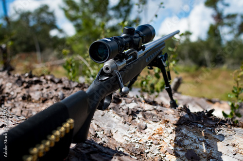 Cuadros en Lienzo Hunting rifle on bipod resting on downed tree