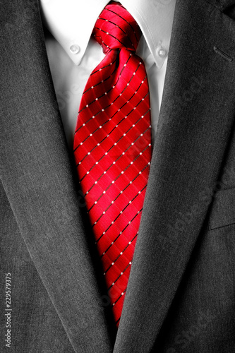 Fotografie, Obraz  Business Suit White Shirt Red Tie Formal Wear Fashion