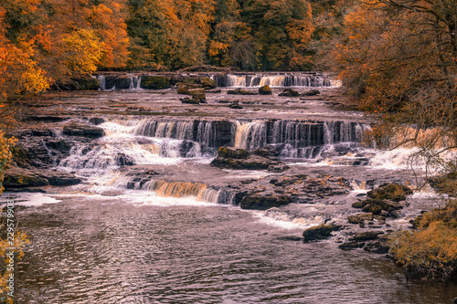 Fotografie, Obraz  Aysgarth Falls are a triple flight of waterfalls, surrounded by forest carved ou