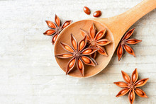 Star Anise Fruits In The Woode...
