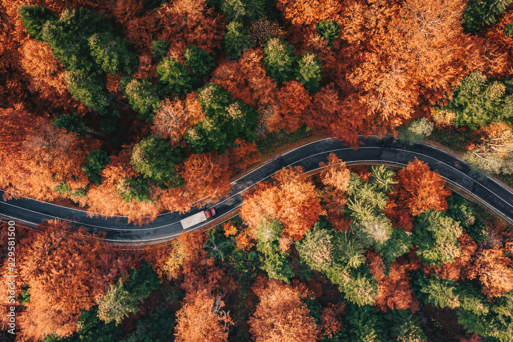 Fototapeta Winding road in the forest in the fall with truck on the road