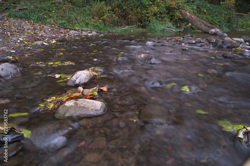 Fényképezés  Long exposure photographs of rolling river with fall foliage