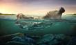 Leinwanddruck Bild - Plastic water bottles pollution in ocean (Environment concept)