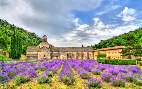 Photo Senanque Abbey, a major tourist destination in Provence, France