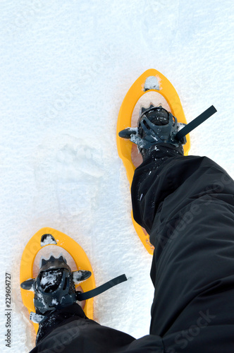 Snowshoes for the hiking in mountain