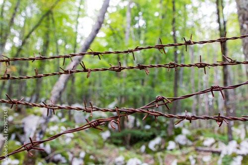 Canvas Print Rusty barbed wire from the times of World War II