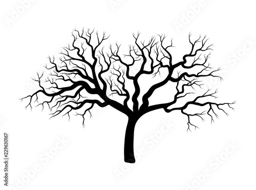 bare tree winter design isolated on white background Canvas-taulu