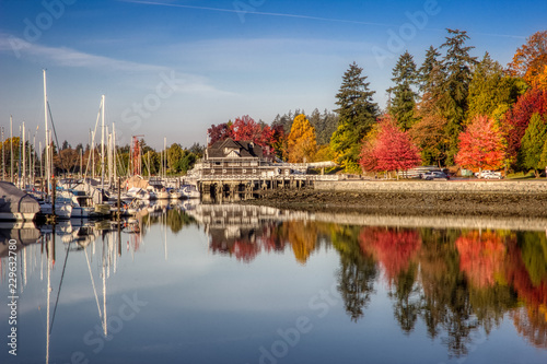 Colorful Autumn Foliage at Stanley Park