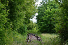 Two Narrow Railway Tracks, Rai...