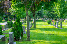 A Beautiful Graveyard Marked W...