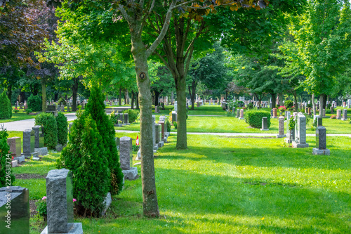 A beautiful graveyard marked with rows of headstones and lined with trees, flowers and walking paths, providing a peaceful setting for visitors to visit departed beloved friends and family members Canvas Print