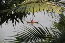 An African Man Fishing From His Dugout Canoe On Lake Kivu, Rwanda, Viewed Through Palm Fronds