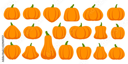 Photo Pumpkin simple flat color icons vector set