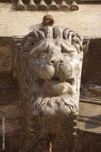 Fotografie, Obraz  sculpture of lion