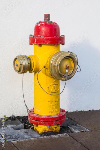 Valokuva Fire Hydrant in Reykjavik