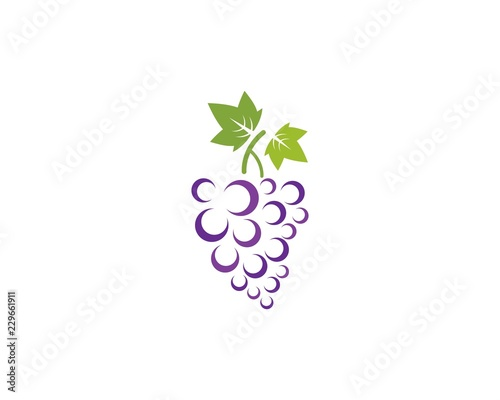 Grape with leaf icon vector template Canvas