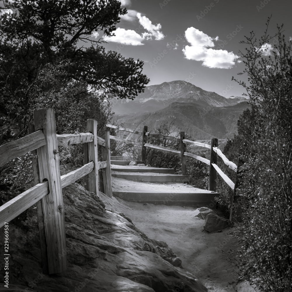 Fototapeta Black and white photo on a trail in Garden of the Gods national park.