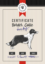 Dog Show Certificate With Bord...