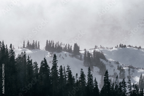 Foto auf Gartenposter Morgen mit Nebel Severe winter weather in the Rocky Mountains, Colorado