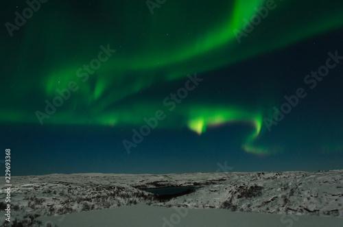 Fotografia, Obraz  Aurora, Northern lights, night, tundra in winter.