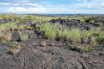 Pu`u Loa Petroglyphs carved into solid black lava with sea view, in Volcano National Park, Hawaii