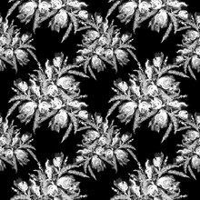 Watercolor Vintage Seamless Pattern, Floral Pattern, Black, White Roses, Poppy, Buds.  Plants, Flowers, Grass In Floral Background. Fashionable Art Illustration. Abstract Splash Of Paint.