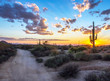Arizona sunset along hiking trail in North Scottsdale desert preserve