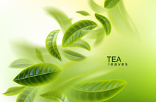 Green Tea Background. Tea Leav...