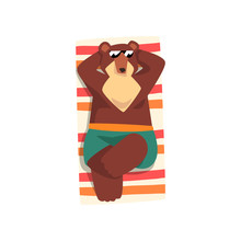 Bear In Sunglasses Sunbathing ...