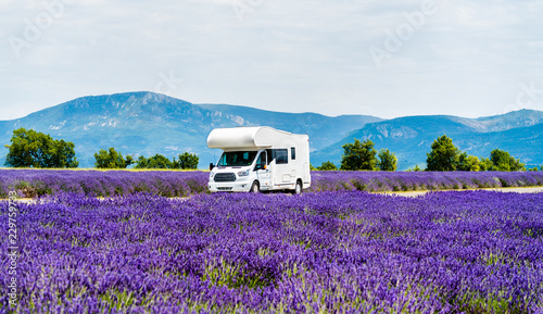 Photo  Motorhome in a lavender field in Provence, France