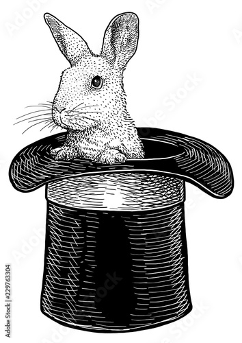 Photo Rabbit in hat illustration, drawing, engraving, ink, line art, vector