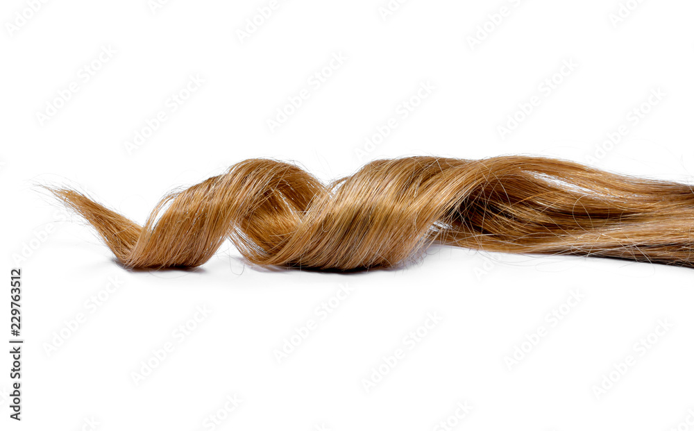 Fototapety, obrazy: Beautiful brunette hair, isolated on white background. Long brown hair tail, curly and healthy hair, design element or hair cut theme.