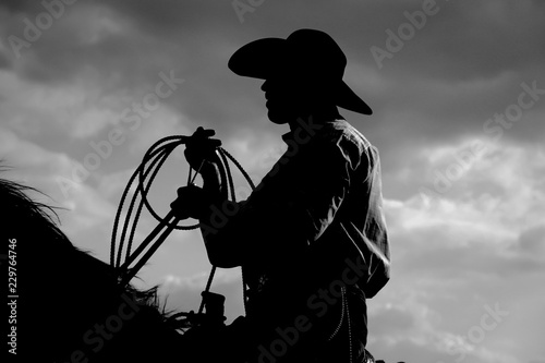 Tela silhouette of cowboy on a horse