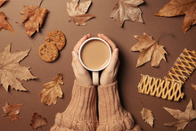 Woman In Autumn Sweater Holding Hot Cozy Drink On Color Background, Top View