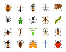Danger Insect Simple Flat Color Icons Vector Set