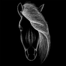 The Vector Logo Horse For T-shirt Design Or Outwear.  Hunting Style Background.