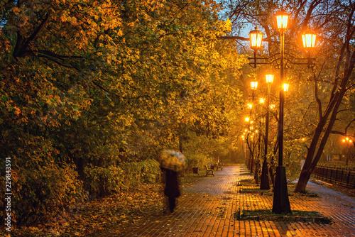 Fotografie, Obraz  Image of the old wet autumn city park.
