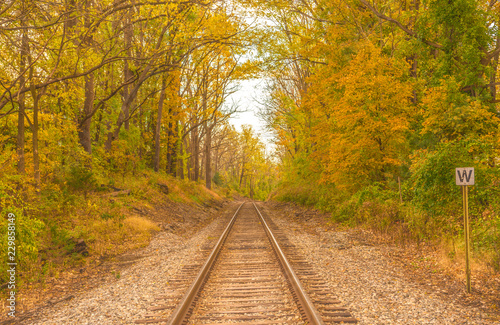 Fotografie, Obraz Old railroad tracks passing through colorful autumn woods in Vernon, New Jersey