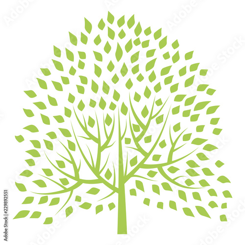 Fényképezés Green tree isolated on white background. Vector illustration.