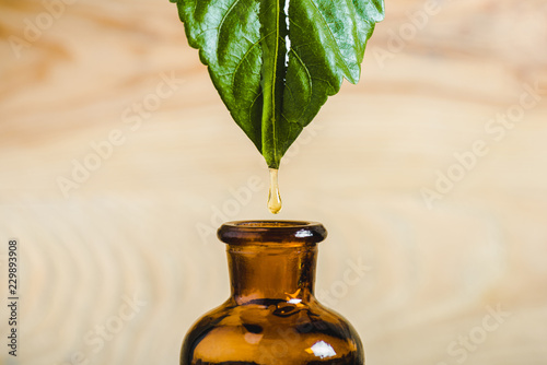 Fototapeta close up of essential oil dripping from leaf into glass bottle isolated on beige obraz na płótnie