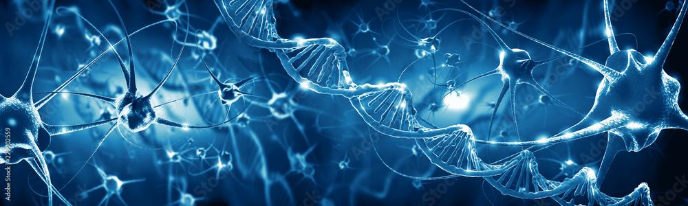 Fototapeta Active nerve cells