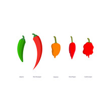 Vector Illustration Hot Spicy Peppers