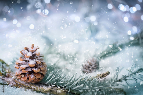 Magic Winter Forest Background