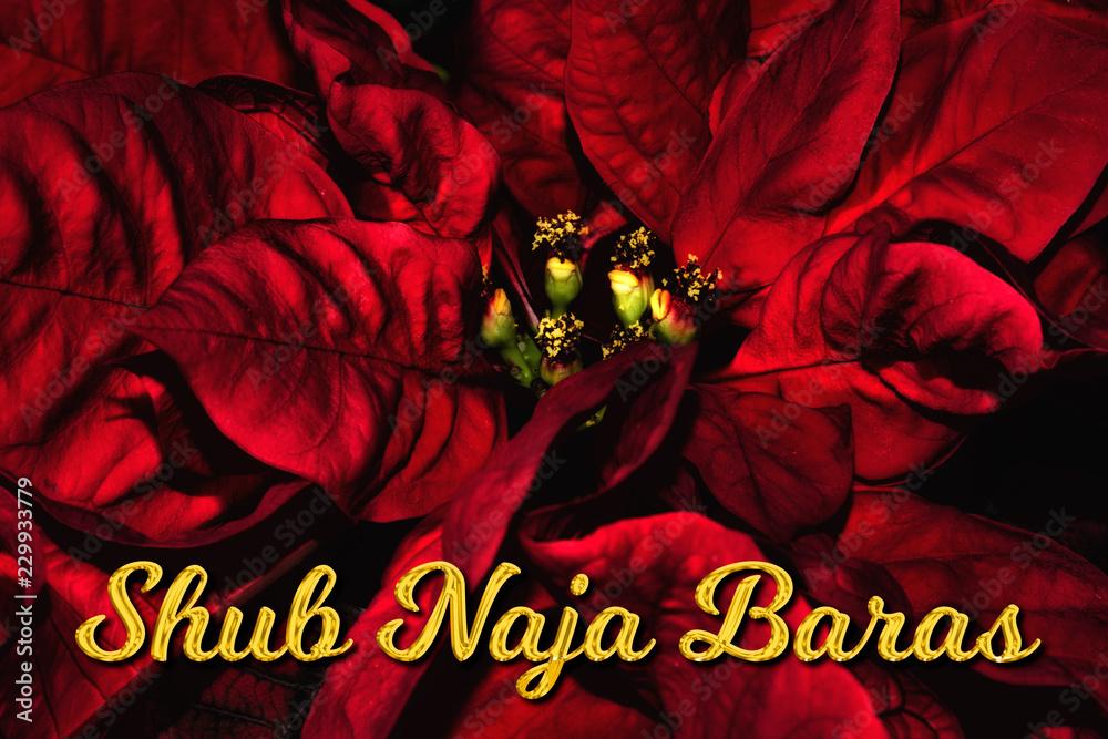 Frohe Weihnachten Hindi.The Hindi Text Shub Naja Baras Means Merry Christmas