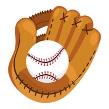 Baseball Equipment Cartoon