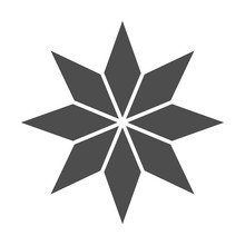 Eight-pointed Star Solid Icon....