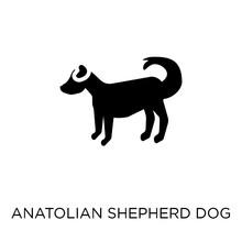 Anatolian Shepherd Dog Dog Icon. Anatolian Shepherd Dog Dog Symbol Design From Dogs Collection.