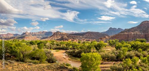 Foto op Plexiglas Zuid Afrika Zion National Park, Utah