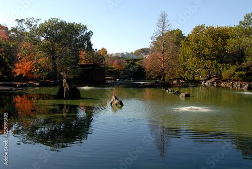 Photo Japanese garden