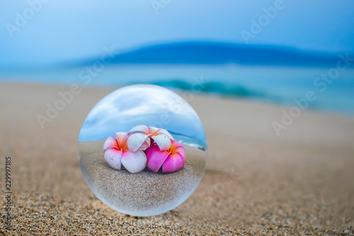 Glass Ball on Sand Captures Plumeria Flowers with Ocean and Island in Background
